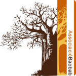 What is Baobab and who we are?