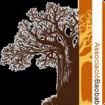 ¿Qué es Baobab y quiénes somos?